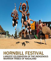Hornbill Festival Amazing North East