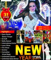 New year Celebration 2016