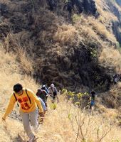Prachitgad Jungle Trek by Shrungarpur Road