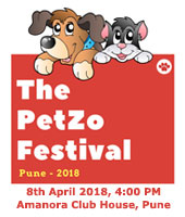 The PetZo Festival, Pune - 2018. Theme : Co-Exist.